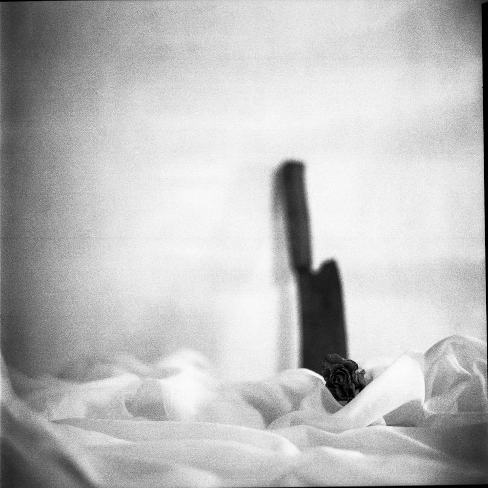 "© 2014 Edin Mustafic - Series ""Pacifism"""